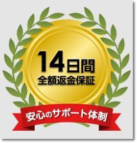 f:id:yhanamizuki:20180614144202j:plain